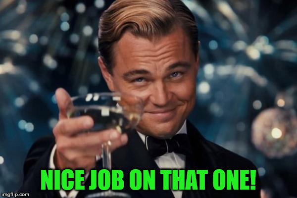 Leonardo Dicaprio Cheers Meme | NICE JOB ON THAT ONE! | image tagged in memes,leonardo dicaprio cheers | made w/ Imgflip meme maker