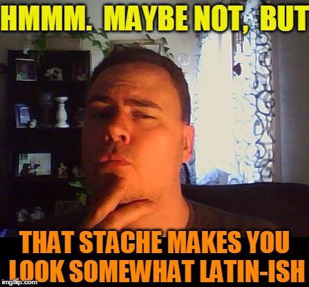 HMMM.  MAYBE NOT,  BUT THAT STACHE MAKES YOU LOOK SOMEWHAT LATIN-ISH | made w/ Imgflip meme maker