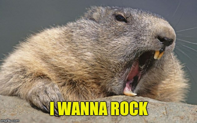I WANNA ROCK | made w/ Imgflip meme maker