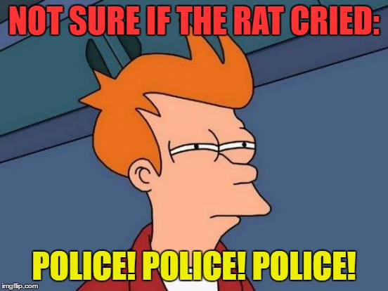 Futurama Fry Meme | NOT SURE IF THE RAT CRIED: POLICE! POLICE! POLICE! | image tagged in memes,futurama fry | made w/ Imgflip meme maker