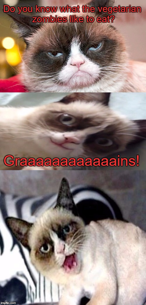 Bad Pun Grumpy Cat | Do you know what the vegetarian zombies like to eat? Graaaaaaaaaaaains! | image tagged in bad pun grumpy cat,zombie week,funny memes,zombies | made w/ Imgflip meme maker