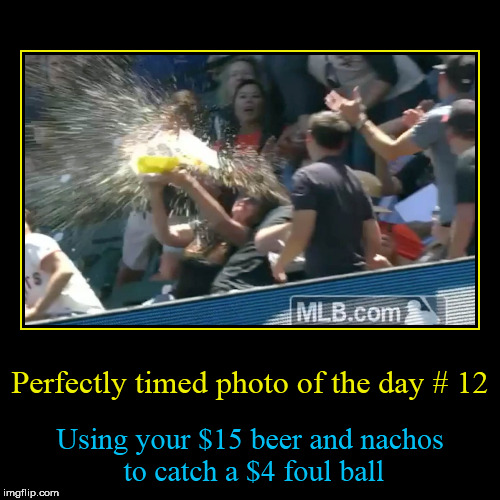 Perfectly timed photo of the day # 12 | Perfectly timed photo of the day # 12 | Using your $15 beer and nachos to catch a $4 foul ball | image tagged in funny,demotivationals,perfectly timed photo,tammyfaye | made w/ Imgflip demotivational maker