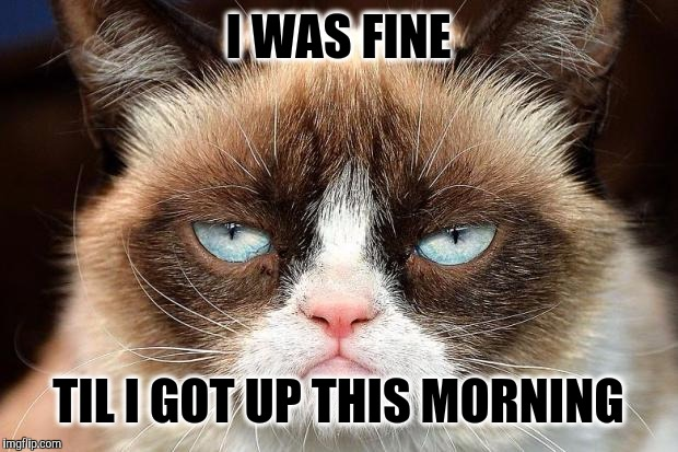 Morning Kills | I WAS FINE TIL I GOT UP THIS MORNING | image tagged in grumpy cat not amused,grumpy cat,mornings,morning cat,waking up,lol so funny | made w/ Imgflip meme maker