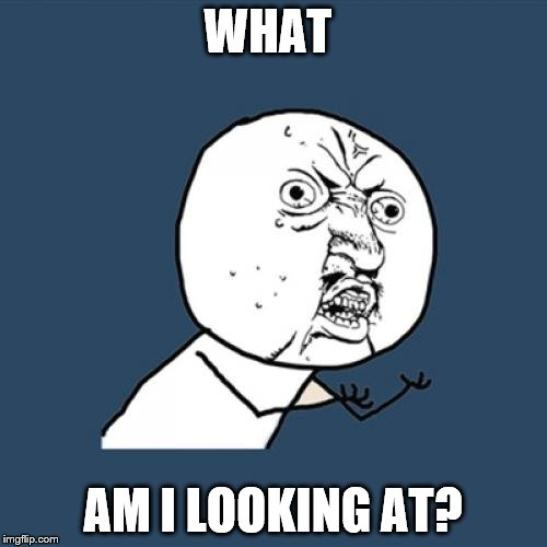 Y U No Meme | WHAT AM I LOOKING AT? | image tagged in memes,y u no | made w/ Imgflip meme maker