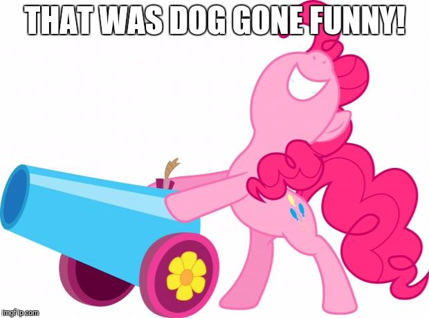 party pinkie | THAT WAS DOG GONE FUNNY! | image tagged in party pinkie | made w/ Imgflip meme maker