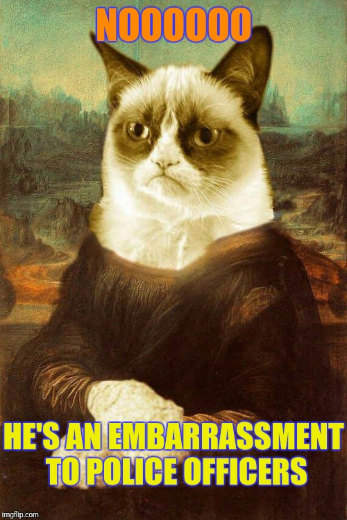 Grumpy cat 1 | NOOOOOO HE'S AN EMBARRASSMENT TO POLICE OFFICERS | image tagged in grumpy cat 1 | made w/ Imgflip meme maker
