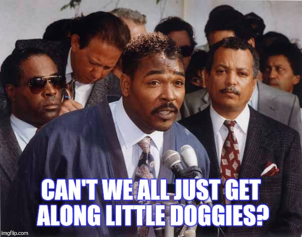 CAN'T WE ALL JUST GET ALONG LITTLE DOGGIES? | made w/ Imgflip meme maker