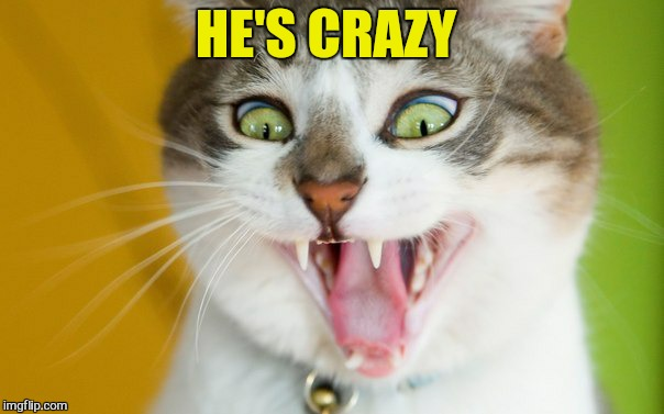 HE'S CRAZY | made w/ Imgflip meme maker