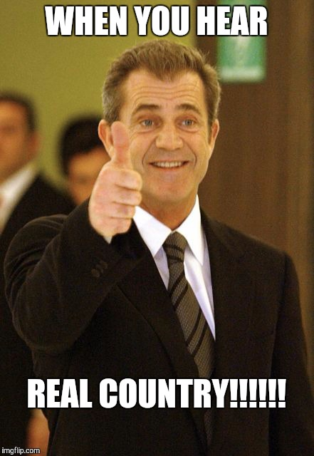 Mel Gibson Approves | WHEN YOU HEAR REAL COUNTRY!!!!!! | image tagged in mel gibson approves | made w/ Imgflip meme maker