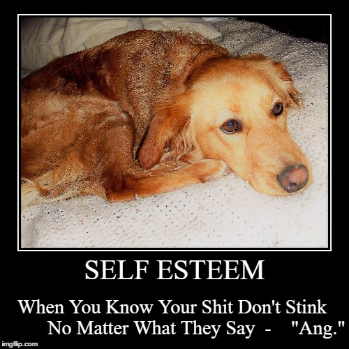 "Wisdum Frum Ang | SELF ESTEEM | When You Know Your Shit Don't Stink         No Matter What They Say  -    ""Ang."" 