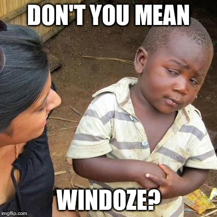 Third World Skeptical Kid Meme | DON'T YOU MEAN WINDOZE? | image tagged in memes,third world skeptical kid | made w/ Imgflip meme maker
