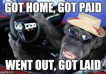 Monkey driver | GOT HOME, GOT PAID WENT OUT, GOT LAID | image tagged in monkey driver | made w/ Imgflip meme maker