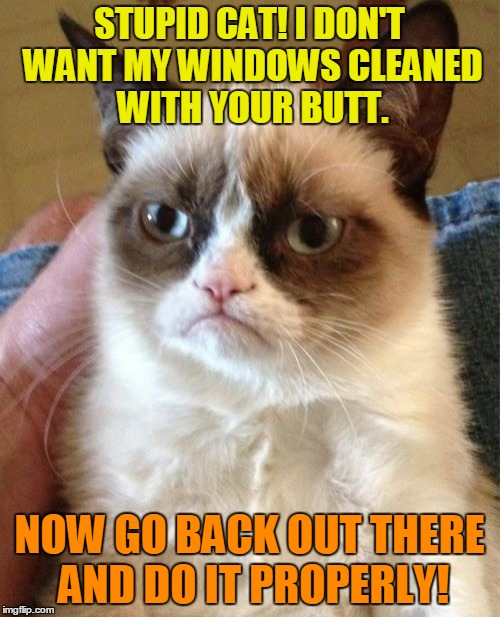 Grumpy Cat Meme | STUPID CAT! I DON'T WANT MY WINDOWS CLEANED WITH YOUR BUTT. NOW GO BACK OUT THERE AND DO IT PROPERLY! | image tagged in memes,grumpy cat | made w/ Imgflip meme maker