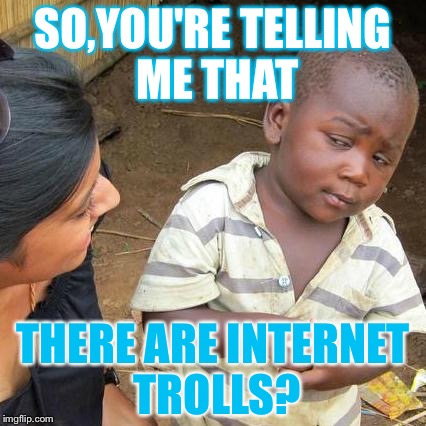 This kid dosen't believe there are Internet trolls. | SO,YOU'RE TELLING ME THAT THERE ARE INTERNET TROLLS? | image tagged in memes,third world skeptical kid | made w/ Imgflip meme maker