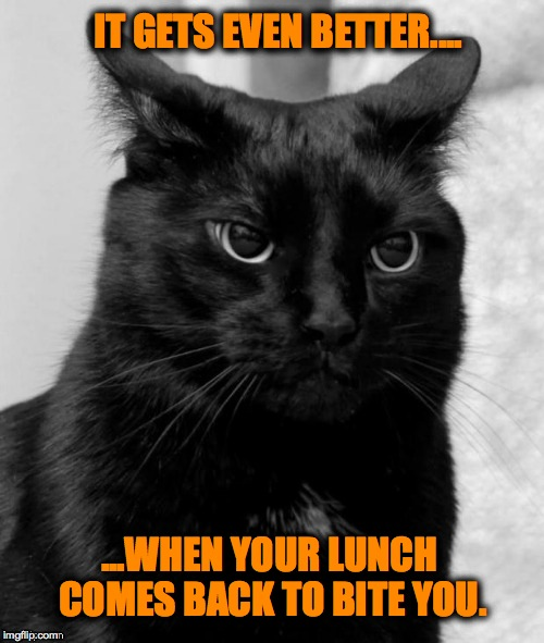 IT GETS EVEN BETTER.... ...WHEN YOUR LUNCH COMES BACK TO BITE YOU. | made w/ Imgflip meme maker