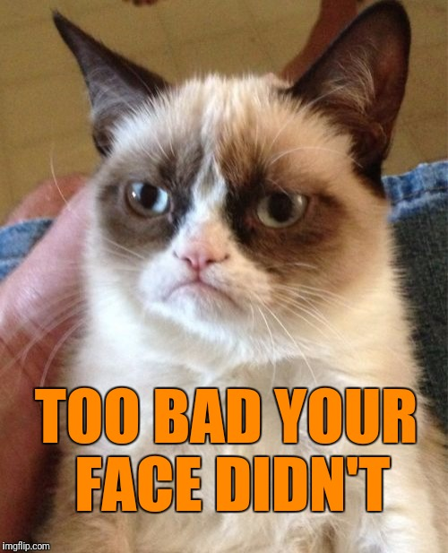 Grumpy Cat Meme | TOO BAD YOUR FACE DIDN'T | image tagged in memes,grumpy cat | made w/ Imgflip meme maker