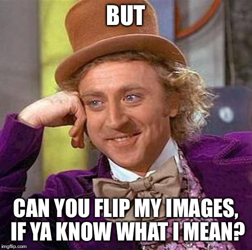 Creepy Condescending Wonka Meme | BUT CAN YOU FLIP MY IMAGES, IF YA KNOW WHAT I MEAN? | image tagged in memes,creepy condescending wonka | made w/ Imgflip meme maker