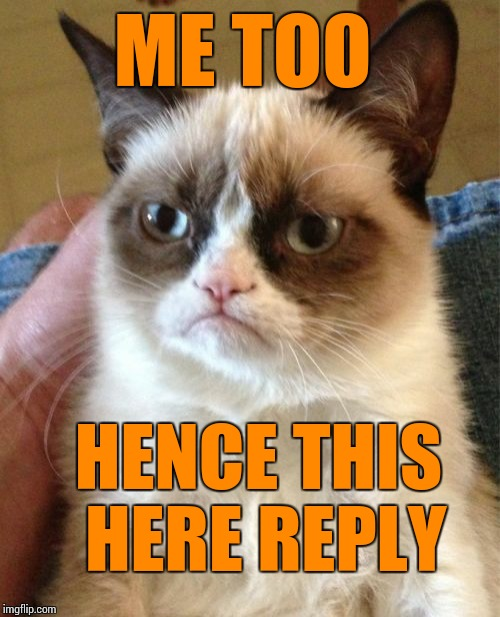 Grumpy Cat Meme | ME TOO HENCE THIS HERE REPLY | image tagged in memes,grumpy cat | made w/ Imgflip meme maker
