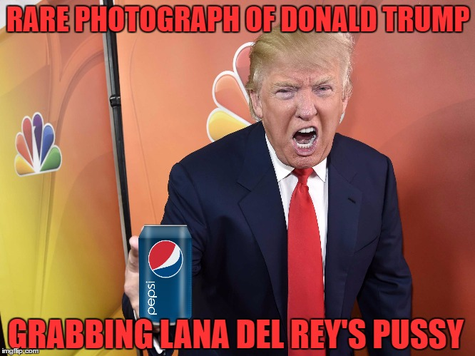 And From The Look On Trump's Face, He's Gone Into Full Beast Mode | RARE PHOTOGRAPH OF DONALD TRUMP GRABBING LANA DEL REY'S PUSSY | image tagged in donald trump,lana del rey,pepsi,triple burn | made w/ Imgflip meme maker