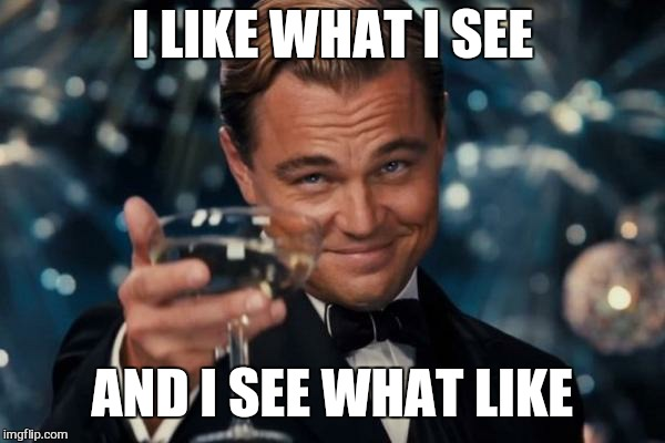 Leonardo Dicaprio Cheers Meme | I LIKE WHAT I SEE AND I SEE WHAT LIKE | image tagged in memes,leonardo dicaprio cheers | made w/ Imgflip meme maker