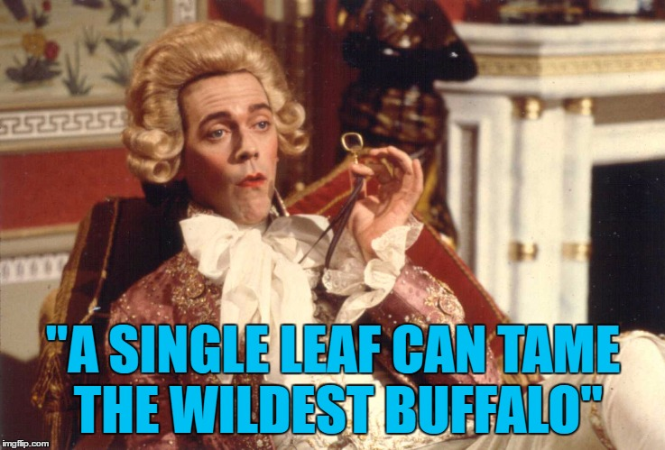 """A SINGLE LEAF CAN TAME THE WILDEST BUFFALO"" 