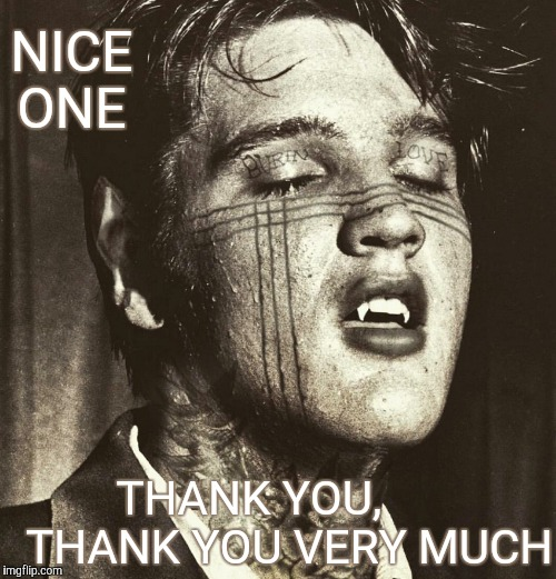 Elvis Vampire | NICE ONE THANK YOU,       THANK YOU VERY MUCH | image tagged in elvis vampire | made w/ Imgflip meme maker