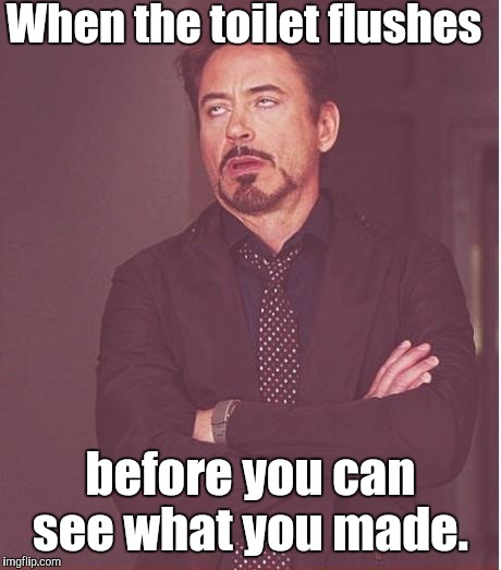 Face You Make Robert Downey Jr Meme | When the toilet flushes before you can see what you made. | image tagged in memes,face you make robert downey jr | made w/ Imgflip meme maker