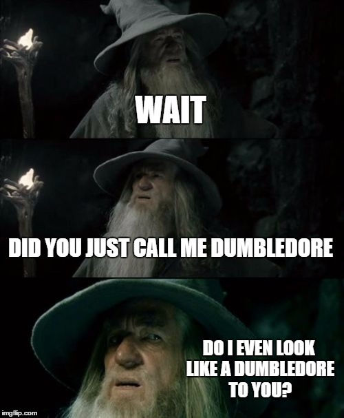 Confused Gandalf Meme | WAIT DID YOU JUST CALL ME DUMBLEDORE DO I EVEN LOOK LIKE A DUMBLEDORE TO YOU? | image tagged in memes,confused gandalf | made w/ Imgflip meme maker