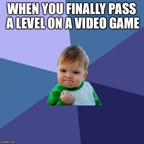 Success Kid Meme | WHEN YOU FINALLY PASS A LEVEL ON A VIDEO GAME | image tagged in memes,success kid | made w/ Imgflip meme maker