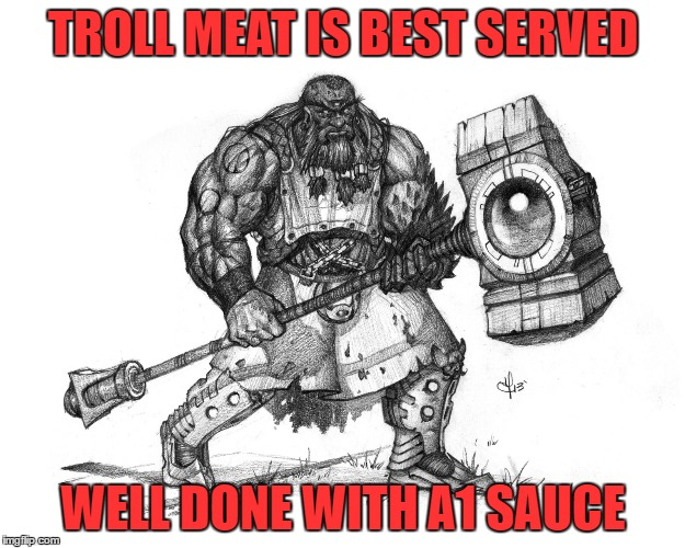 Troll Smasher | TROLL MEAT IS BEST SERVED WELL DONE WITH A1 SAUCE | image tagged in troll smasher | made w/ Imgflip meme maker