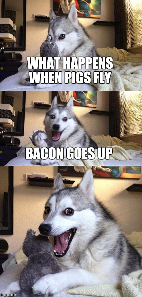 Bad Pun Dog Meme | WHAT HAPPENS WHEN PIGS FLY BACON GOES UP | image tagged in memes,bad pun dog | made w/ Imgflip meme maker