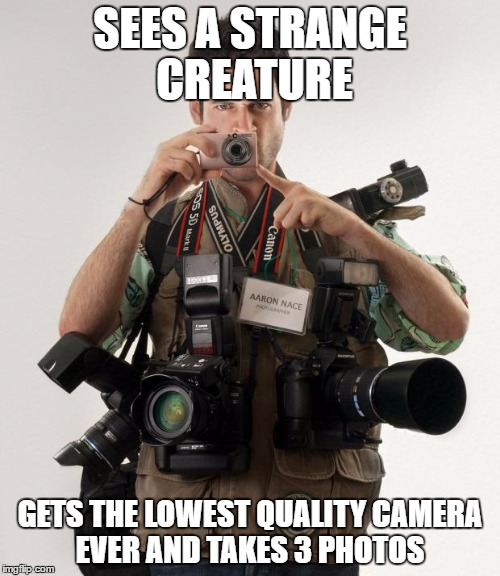 Professional Photographer | SEES A STRANGE CREATURE GETS THE LOWEST QUALITY CAMERA EVER AND TAKES 3 PHOTOS | image tagged in professional photographer | made w/ Imgflip meme maker