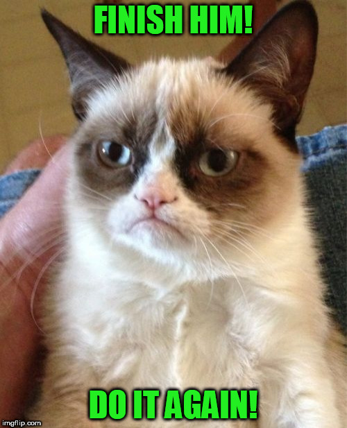 Grumpy Cat Meme | FINISH HIM! DO IT AGAIN! | image tagged in memes,grumpy cat | made w/ Imgflip meme maker