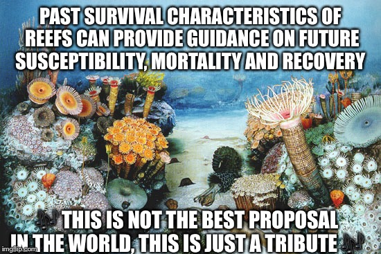 PAST SURVIVAL CHARACTERISTICS OF REEFS CAN PROVIDE GUIDANCE ON FUTURE SUSCEPTIBILITY, MORTALITY AND RECOVERY  | image tagged in coral,proposal,nerd | made w/ Imgflip meme maker