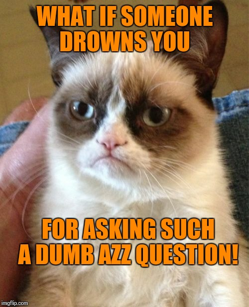 Grumpy Cat Meme | WHAT IF SOMEONE DROWNS YOU FOR ASKING SUCH A DUMB AZZ QUESTION! | image tagged in memes,grumpy cat | made w/ Imgflip meme maker