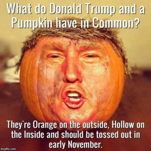 XD Donald pumpkin trump | image tagged in xd,pumpkin man,donald trump is orange | made w/ Imgflip meme maker
