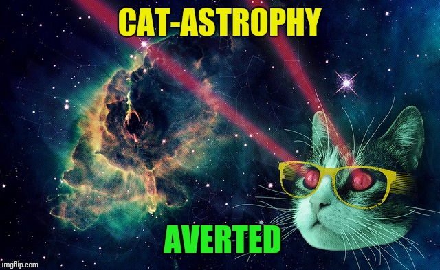 CAT-ASTROPHY AVERTED | made w/ Imgflip meme maker