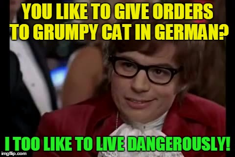 YOU LIKE TO GIVE ORDERS TO GRUMPY CAT IN GERMAN? I TOO LIKE TO LIVE DANGEROUSLY! | made w/ Imgflip meme maker