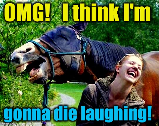 OMG!   I think I'm gonna die laughing! | made w/ Imgflip meme maker