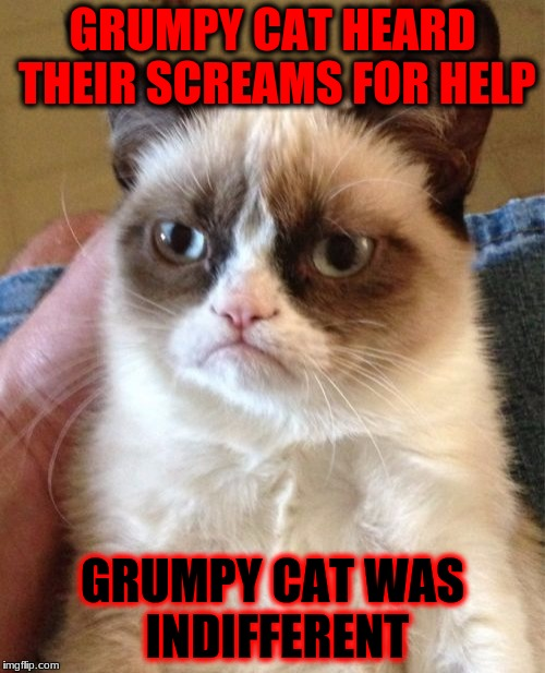 Great for L4D2 sprays. | GRUMPY CAT HEARD THEIR SCREAMS FOR HELP GRUMPY CAT WAS INDIFFERENT | image tagged in memes,grumpy cat | made w/ Imgflip meme maker