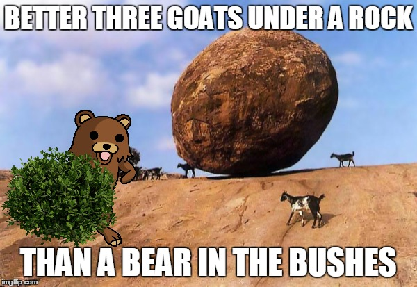 BETTER THREE GOATS UNDER A ROCK THAN A BEAR IN THE BUSHES | made w/ Imgflip meme maker