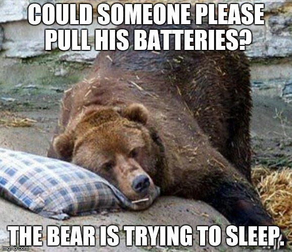 Re: Simon | COULD SOMEONE PLEASE PULL HIS BATTERIES? THE BEAR IS TRYING TO SLEEP. | image tagged in sleep,bear,simon,memes,funny | made w/ Imgflip meme maker