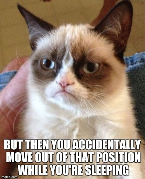 Grumpy Cat Meme | BUT THEN YOU ACCIDENTALLY MOVE OUT OF THAT POSITION WHILE YOU'RE SLEEPING | image tagged in memes,grumpy cat | made w/ Imgflip meme maker
