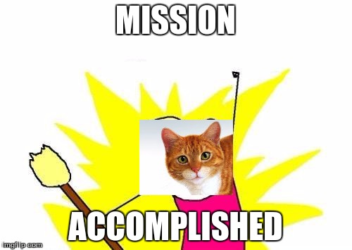 X All The Y Meme | MISSION ACCOMPLISHED | image tagged in memes,x all the y | made w/ Imgflip meme maker