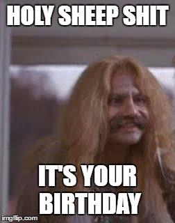 HOLY SHEEP SHIT | HOLY SHEEP SHIT IT'S YOUR BIRTHDAY | image tagged in holy,sheep,shit,cheech,cousin | made w/ Imgflip meme maker