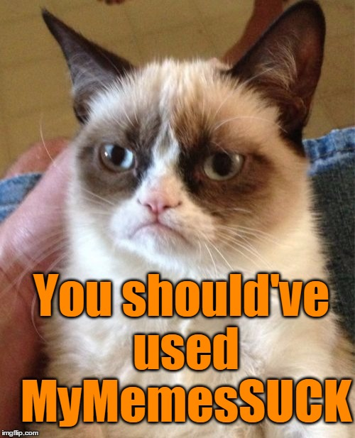 Grumpy Cat Meme | You should've used MyMemesSUCK | image tagged in memes,grumpy cat | made w/ Imgflip meme maker