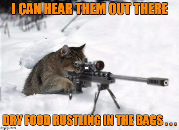I CAN HEAR THEM OUT THERE DRY FOOD RUSTLING IN THE BAGS . . . | made w/ Imgflip meme maker