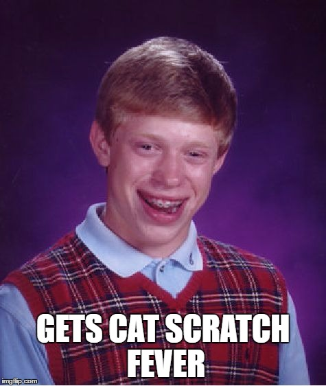Bad Luck Brian Meme | GETS CAT SCRATCH FEVER | image tagged in memes,bad luck brian | made w/ Imgflip meme maker