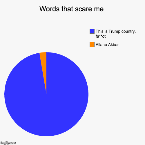 Words that scare me | Allahu Akbar, This is Trump country, fa**ot | image tagged in funny,pie charts,myrianwaffleev,alt-right,radical islam,radical right | made w/ Imgflip pie chart maker