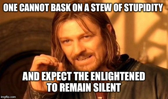 One Does Not Simply Meme | ONE CANNOT BASK ON A STEW OF STUPIDITY AND EXPECT THE ENLIGHTENED TO REMAIN SILENT | image tagged in memes,one does not simply | made w/ Imgflip meme maker